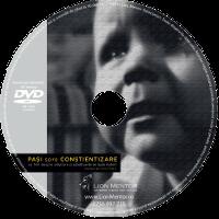 alaptare, dvd, alaptarea